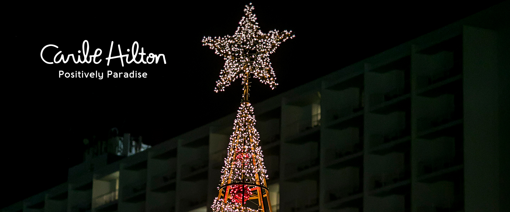 Exterior Christmas Tree