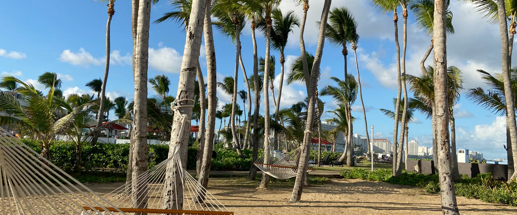 Caribe Hilton Hammock Garden