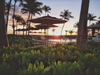 Caribe Hilton Sunrise by the Pool